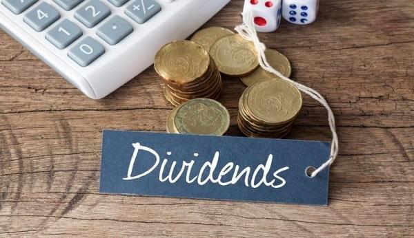 Что такое дивидендные акции