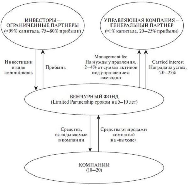 структура венчурных фондов