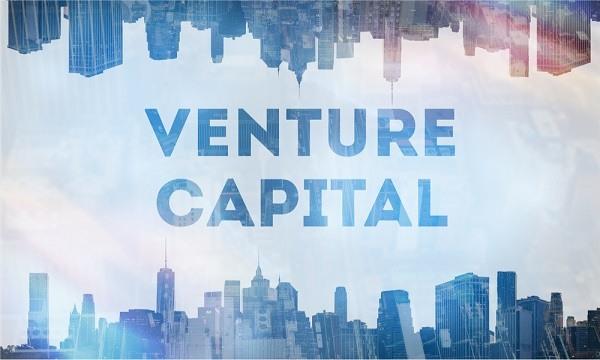 Что такое венчурный капитал